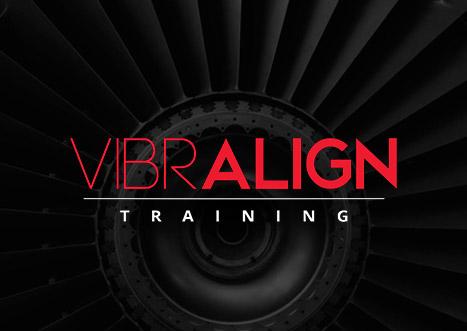 VibrAlign Training
